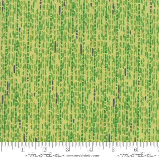 Painted Meadow            Sprig