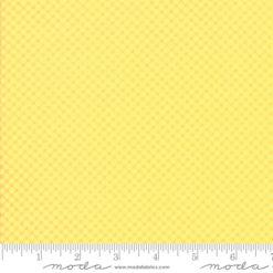 Fiddle Dee Dee           Yellow