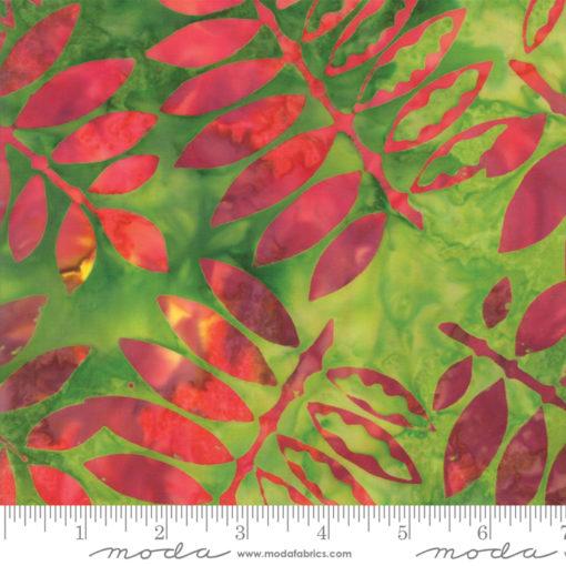 Santorini                  Leaf